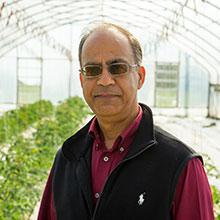 Dr. Arbindra Rimal
