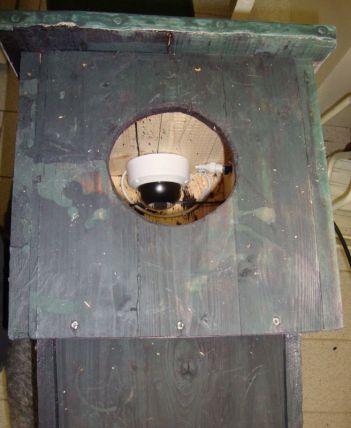 Webcam und Infarotbeleuchtung im Nistkasten - Foto: Lars Lachmann