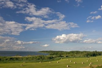 Naturschutzgebiet Steinhorn an der Müritz - Foto: Klemens Karkow