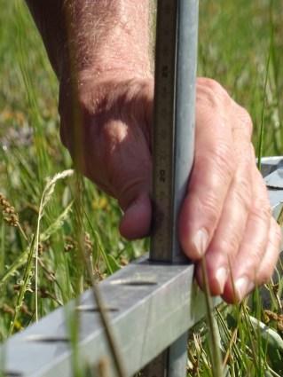 Mithilfe einer bestimmten Messlatte konnte die Sedimentation, die in diesem Jahr stattgefunden hat, gemessen werden.