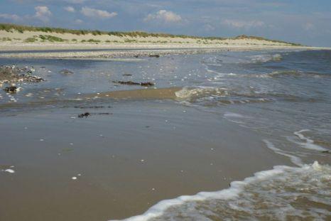 Brandung am Strand von Trischen (Foto: Tore J. Mayland-Quellhorst).