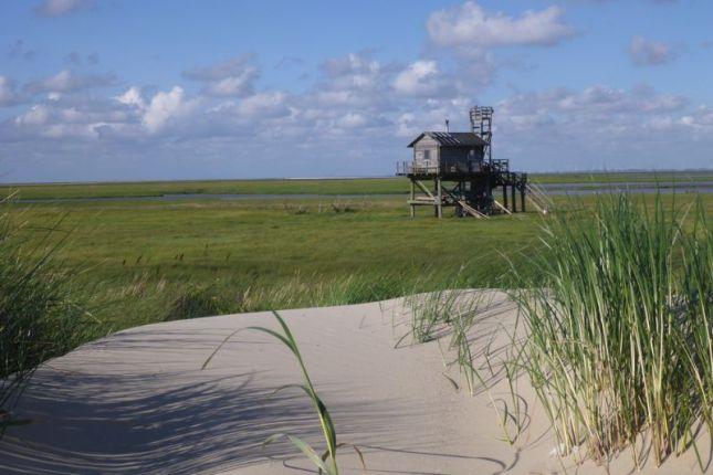 Hütte hinter Düne (Foto: Tore J. Mayland-Quellhorst).