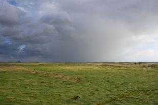 Regenschauer (Foto: Tore J. Mayland-Quellhorst).