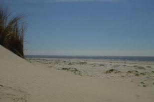 Sommerstimmung am Strand (Foto: Tore J. Mayland-Quellhorst).