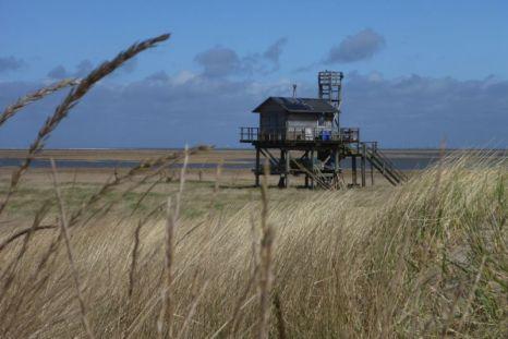 Die Hütte aus der Düne (Foto: Tore J. Mayland-Quellhorst).