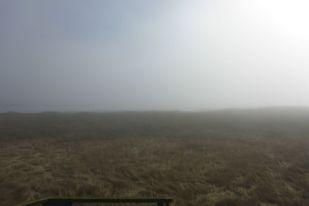 Nebel über Trischen (Foto: Tore J. Mayland-Quellhorst).