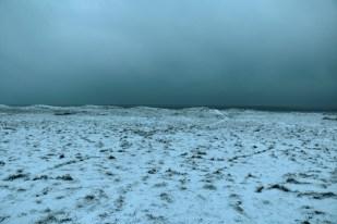 Trischen im Schnee (Foto: Jonas Kotlarz)