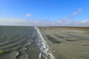 Wasserkante bei Niedrigwasser im Westen (Foto: Jonas Kotlarz)