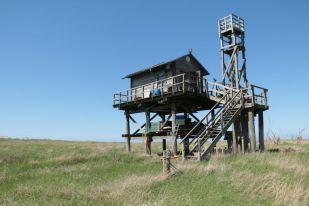 Die Vogelwart-Hütte auf Trischen (Foto: Jonas Kotlarz)