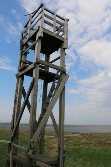 Beobachtungsturm (Foto: Jonas Kotlarz)