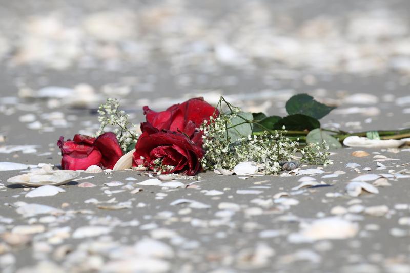 Rote Rosen nach einer Seebestattung am Strand von Trischen (Foto: Jonas Kotlarz)