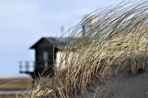 Düne mit Hütte (Foto: A. de Walmont)