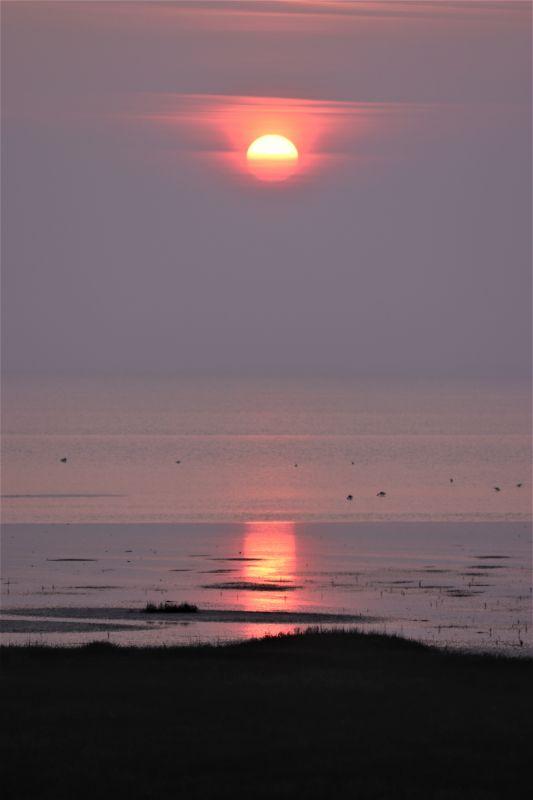 Sonne in pink (Foto: A. de Walmont)