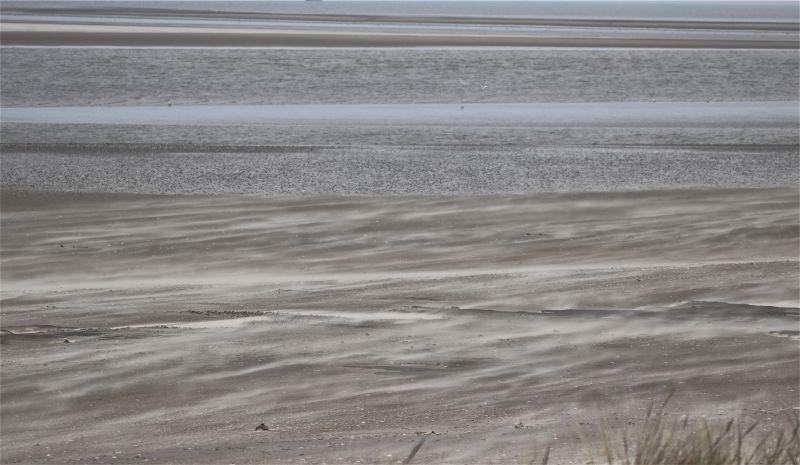 fliegender Sand am Strand (Foto: A. de Walmont)