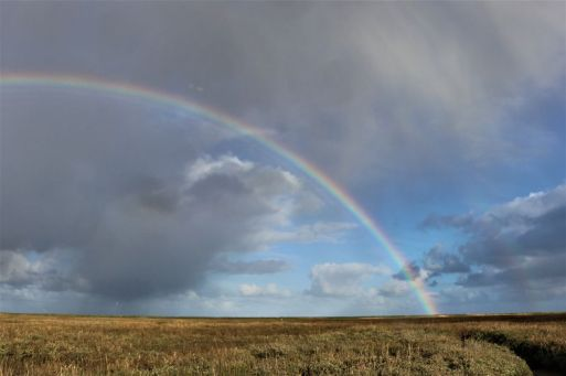 wechselhafte Wetter (Foto: A. de Walmont)