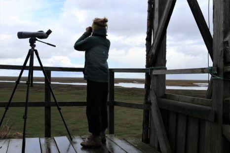 Beobachtungen vom Hüttenumlauf (Foto: A. de Walmont)
