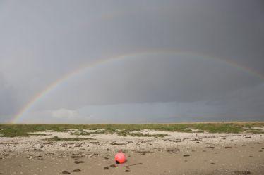 Regenbogen mit Fender