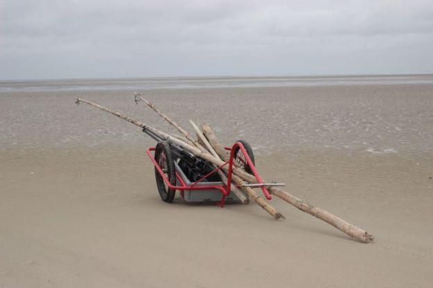 Holz sammeln am Strand