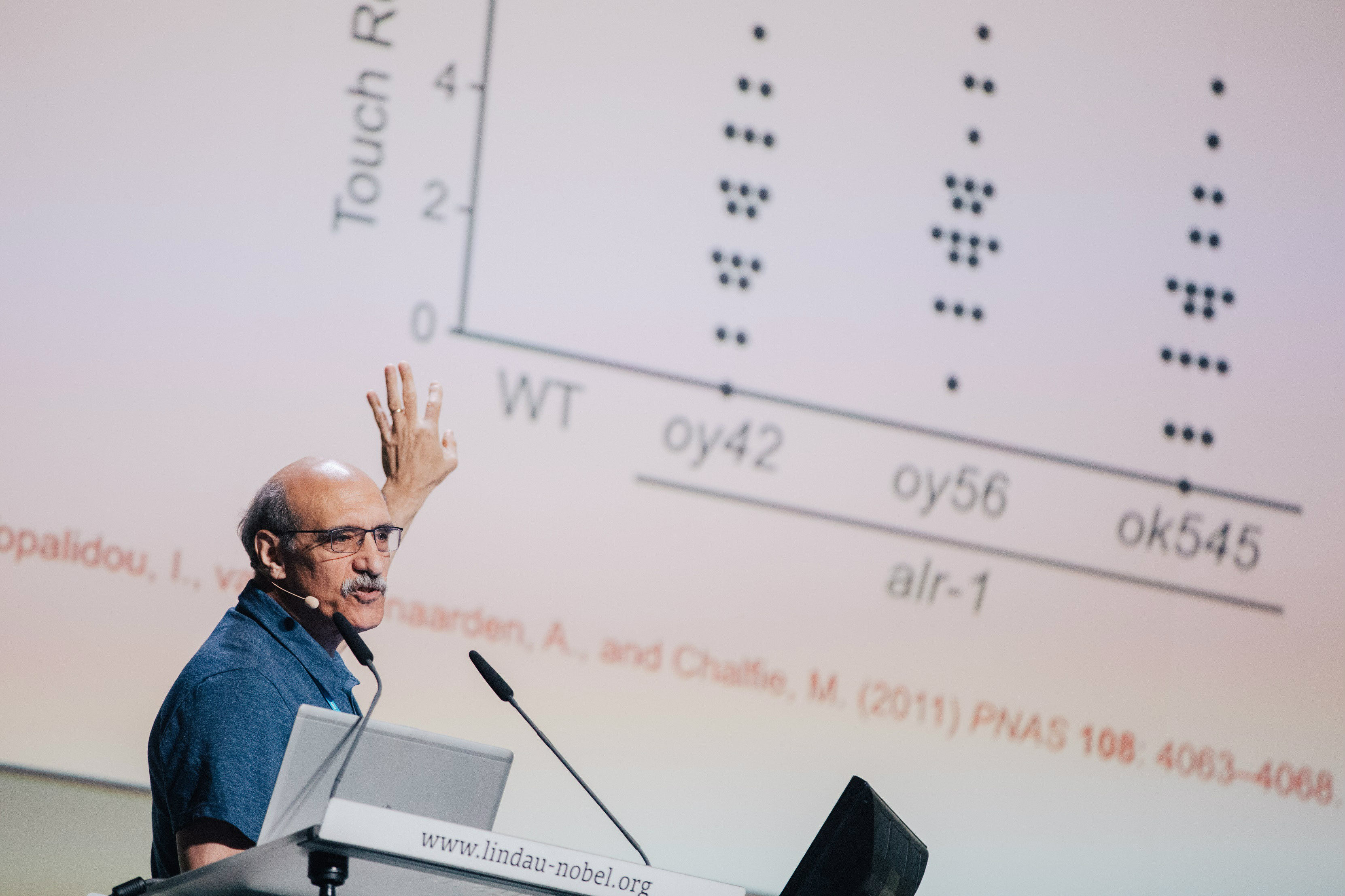 Chalfie's lecture during the 2017 Lindau meeting