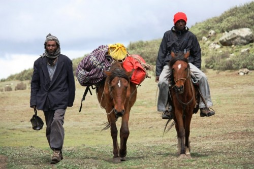 Kadir and Idris (pictured left to right) with our pack and ride horse