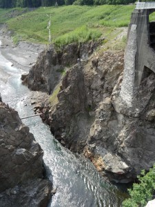 Elwha flowing through the site of the former Glines Canyon dam