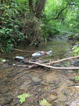 Many parts of this region do not have municipal waste disposal programs, so some areas by streams have become de facto garbage dumps.