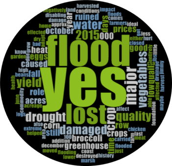 "This word cloud is based on the question, ""If 2015 was a bad year [for income], did the flood play a major role?""."
