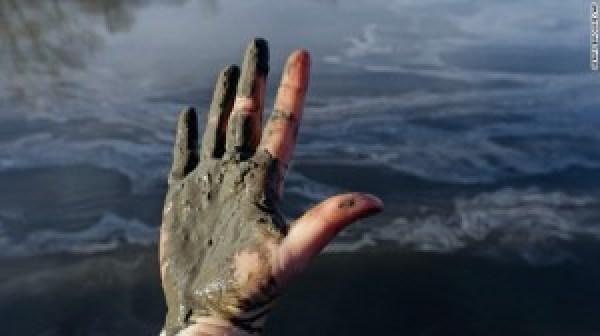 Environmental Policy Blog 1st