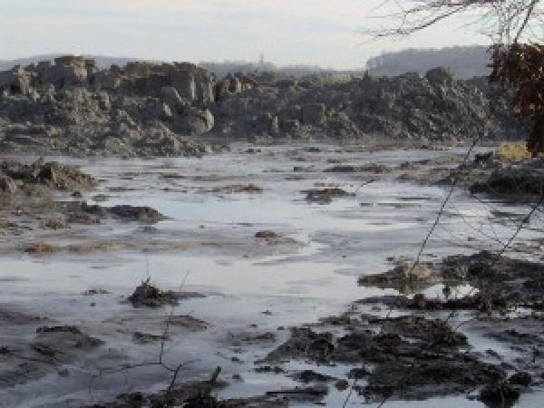Environmental Policy Blog 2nd
