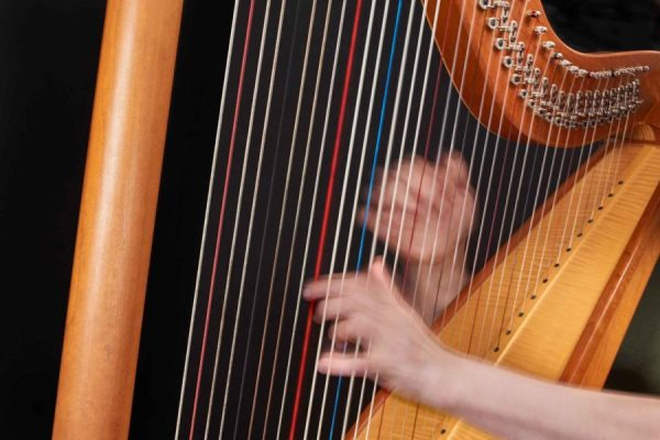 Das fäkale Orchester - Die Harfe