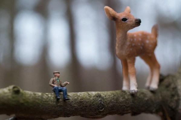 So einfach kann das Leben sein, Bambi. Foto: Hufner