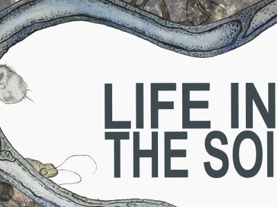 Life in the Soil – Windsor (Canada) March 7-9 2017