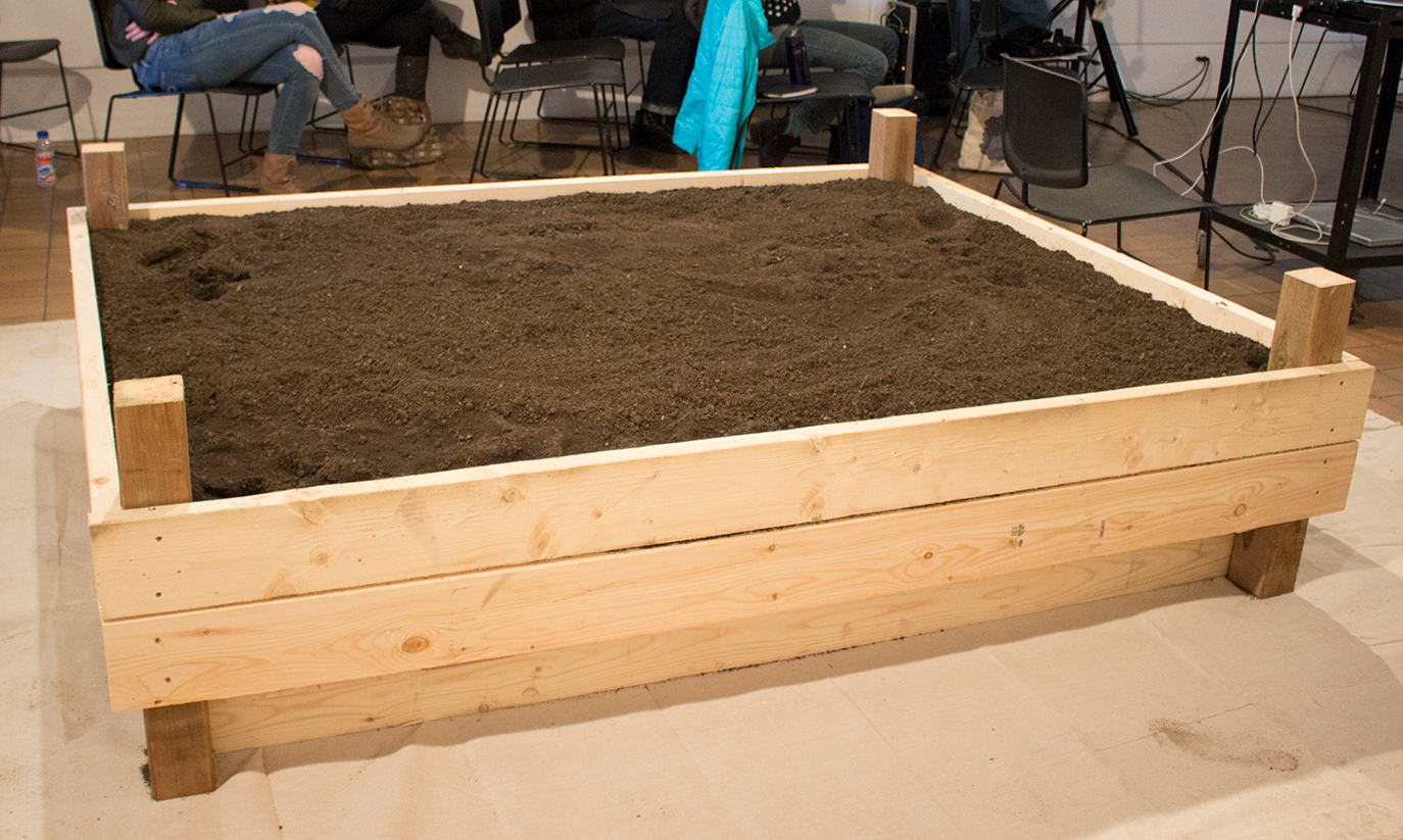 A Bed of Soil