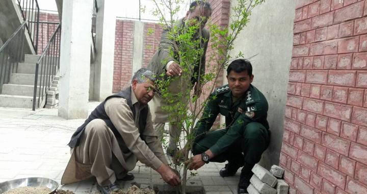 Muhammad plants a tree