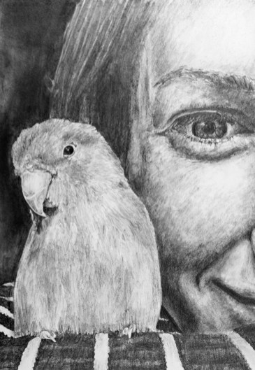 """Nesting #18, graphite on paper, 12"""" x 16"""", 2020, $400 without frame, $500 with frame"""