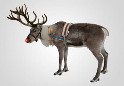 Rudolph the Reindeer Leads Santa's Sleigh on Christmas Eve