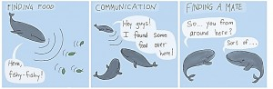 Whale chat #alltheycareforisfoodandromance