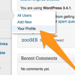 Set your wordpress profile