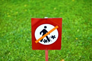 keep_off_grass_shutterstock_57738772blog