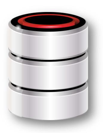on-premise-database