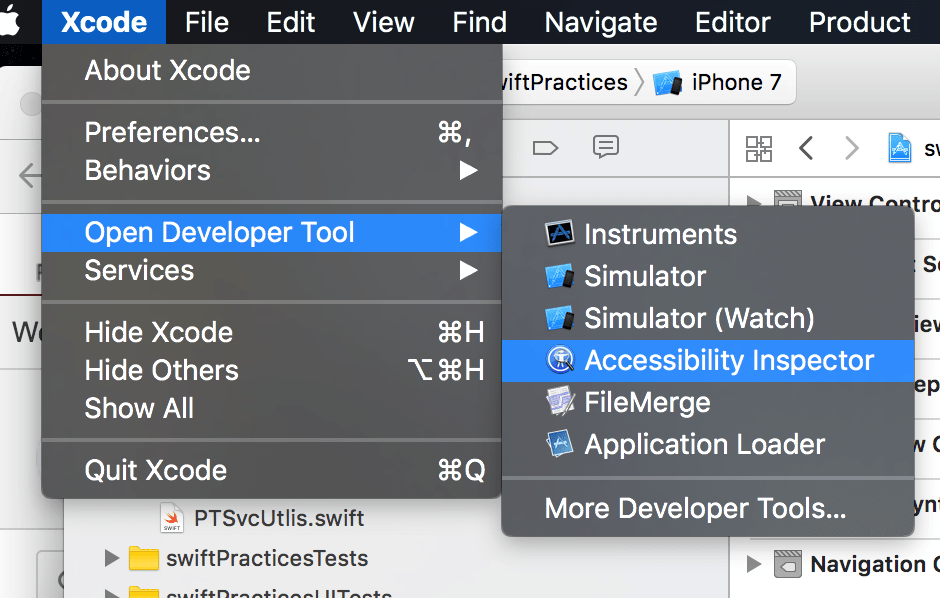 How to Make Your iOS App Accessible Using Xcode8 & swift3 1