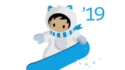 Snowy Salesforce graphic 2019