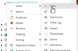Field type items