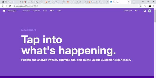 Twitter – Developer Page: