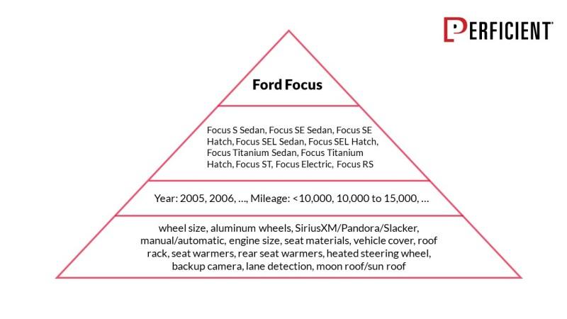 Fort Focus