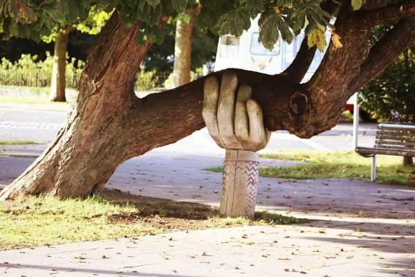 Support Tree@1x.jpg