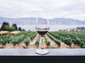 Wine Glass@1x.jpg