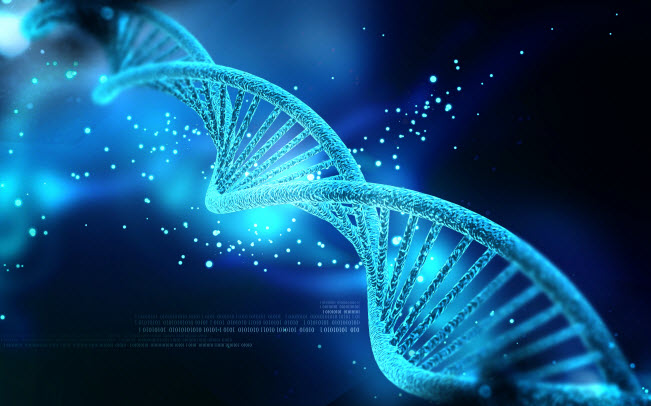 dna_shutterstock_wordpress