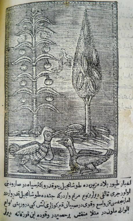 woodcut[89]verso
