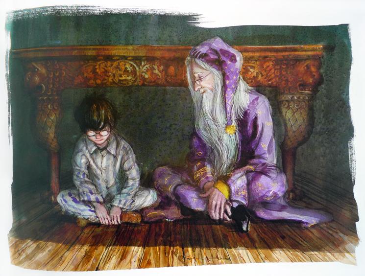Jim kay s wizarding world harry potter and the sorcerer s for Espejo harry potter